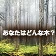 あなたはどんな木?